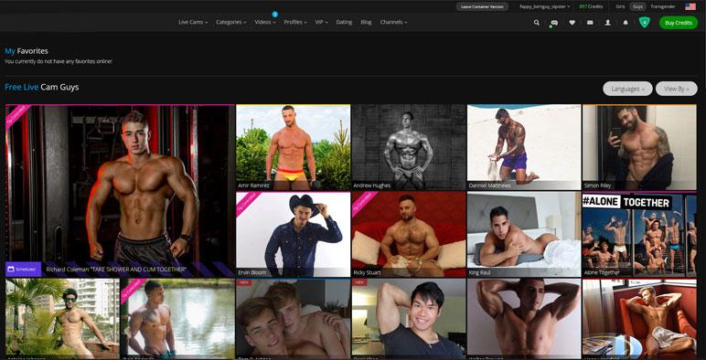 Cam2Cam step screenshot